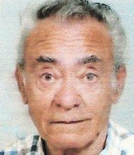 José Damião Raposo Pereira