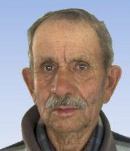 José Luís Gualdino