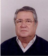 Manuel dos Santos Horta Parreira