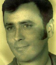 Luiz Fernando Alves Baiôa
