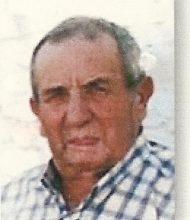 António Luís Mestre