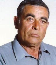 Manuel João Guerreiro
