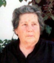 Maria José Martins Camacho