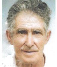 António Adolfo Martins