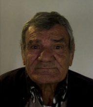 João António Guerreiro