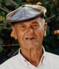 José Pedro Guerreiro Teixeira