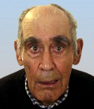 José Palma Rosa