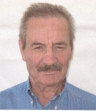 Manuel Mestre Batista