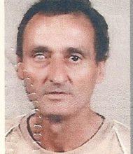 José António Martins Horta