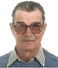 Joaquim Rosa Viegas