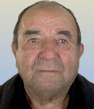José João Fernandes