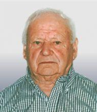 Manuel José Sebastião