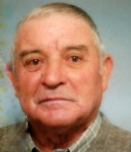 Manuel Mestre Luiz