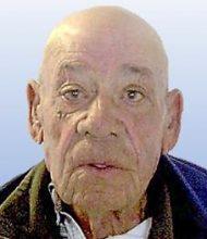 Manuel Francisco Ruivo
