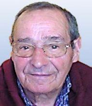José Gomes Guerreiro Seno